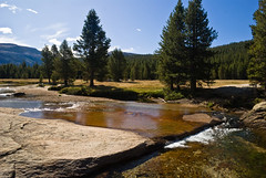 Meadows in the morning (brookpeterson) Tags: yosemite tuolumnemeadows