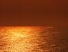 ... non è tutto oro quello che luccica (FranK.Dip) Tags: desktop sunset wallpaper panorama costa gold barca tramonto cielo sole nebbia salento puglia cartolina oro brindisi fotográfico orizzonte sfondo sfondi foschia dip2 frankdip panoramafotográfico 10062009