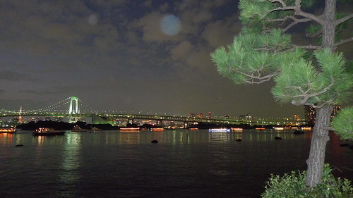 Watching Tokyo at night from Odaiba