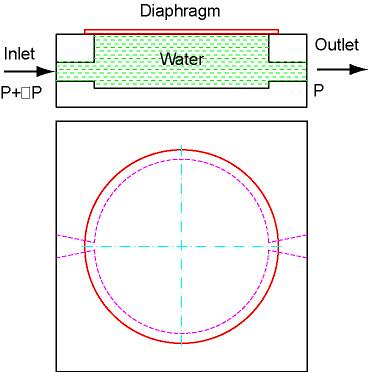 diaphragm by you.