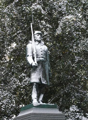 Snowy Guard