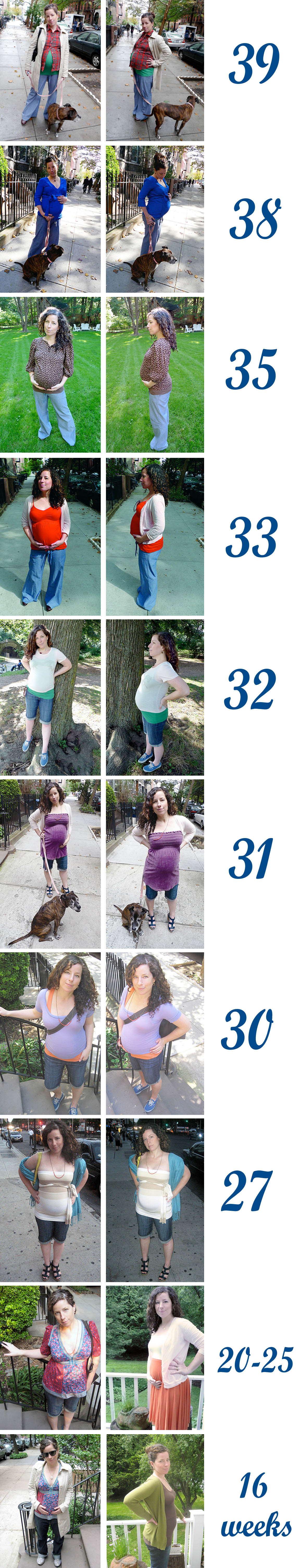 Pregnancy Growth Chart