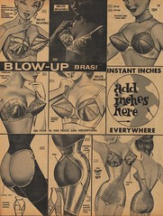 Blow-Up Bras (The Cardboard America Archives) Tags: fashion vintage women catalog 1963 bras fredericksofhollywood