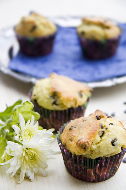 Cheese and Chocolate Muffin