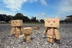 A Group Of Fuzzy Cuteness (Antty+) Tags: blue portrait sky cute paper toys japanese amazon singapore burger awesome group champion best eat cardboard seven 711 standard eleven tone danbo danboard danboru antty