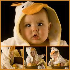 Addison ducky