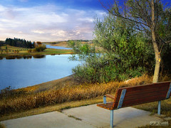 Rest stop 2 (mrbillt6) Tags: northdakota landscape reservoir bench tree lake water grass prairie plains outdoors