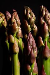 asparagus (josephjphoto) Tags: vegetable asparagus spargel flickrunitedwinner