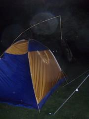 チョウチンアンコウ型テント