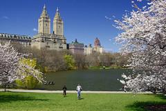 Diumenge a Central Park / Sunday in Central Park (SBA73) Tags: nyc sky usa lake ny newyork building green primavera skyscrape