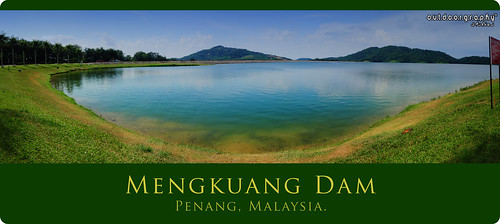 Mengkuang Series #6 (Panorama)