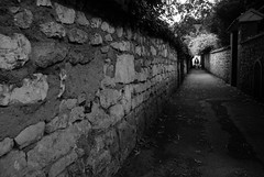 Walkway wall, Giverny