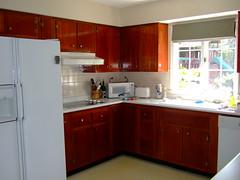 Kitchen (bks4jhb) Tags: kitchen oldcabinets 1950s house lexington kentucky landscape yard bellefonte home