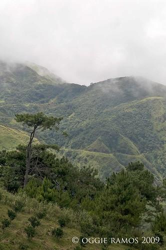 Nueva Vizcaya Salacsac Trail Lone Tree