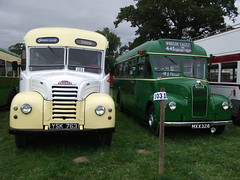 YSK763 Ford Thames & London Transport GS26 MXX326 Guy Special (chrisbell50000) Tags: park old bus guy london ford buses thames rally transport steam shrewsbury special deck single preserved decker onslow gs26 mxx326 ysk763 ps2001 chrisbellphotocom