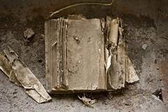 Book of Destiny (Kuro no Kishi) Tags: book destiny future ruined flickrchallengegroup flickrchallengewinner