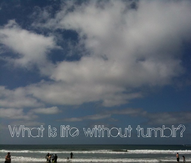 life without tumblr