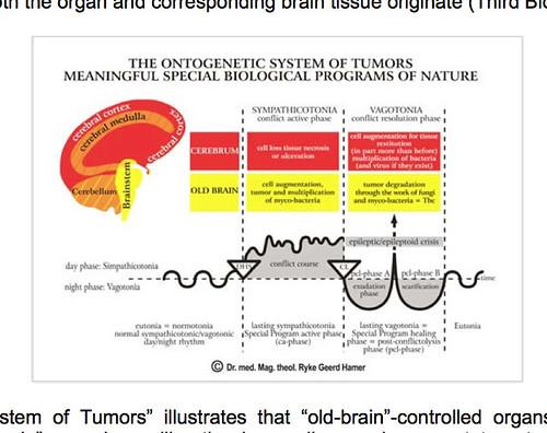 Ontogenetic