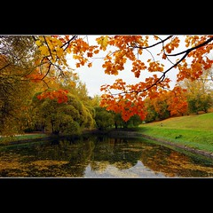 The colours of Autumn (JannaPham) Tags: park autumn red orange reflection green water colors yellow canon garden landscape eos golden russia moscow 5d kolomenskoye markii    project365  118365  jannapham