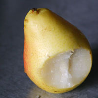 pear-for-web copy