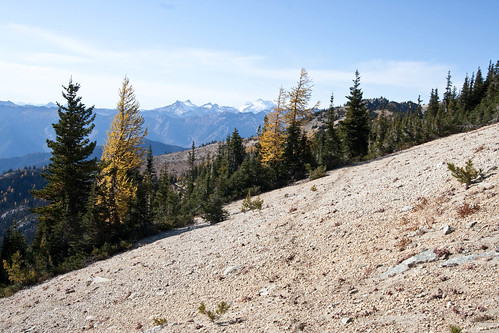 Glacier Peak with trees an pumice