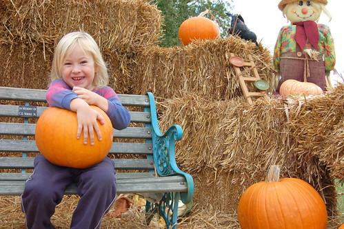 pumpkin pickin