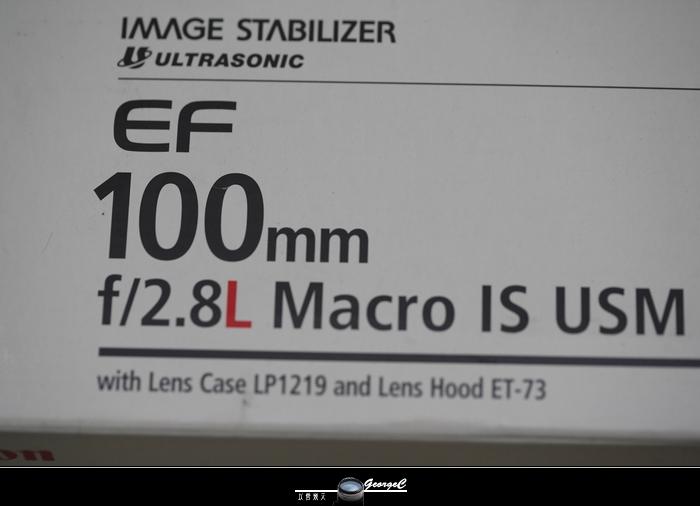 Macro02.jpg