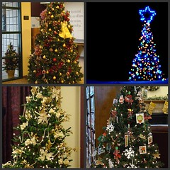 Christmas Tree Collage (Sandy*S) Tags: christmas tree collage picnik ansh scavenger32
