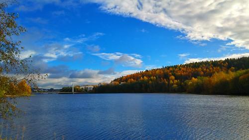 Jyväskylän lake