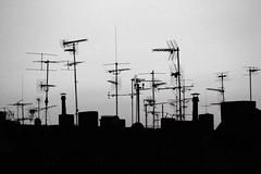 Antennen 1 (Westend)