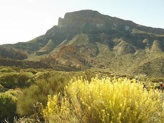 Parque Nacional Teide - 1