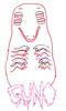 Guno (Liz Dempsey) Tags: pink red white black monster drawing trippy psycedelic guno lizdempsey