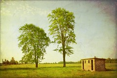 school trees girls texture abandoned boys rural bathroom gimp pasture washroom dogma lambtoncounty t4l wilkesport prettyroad skeletalmess maxfwilliams busyville robbnorth bentpathline