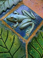 frog tile (msdonnalee) Tags: muro verde green wall tile pared groen architecturaldetail mosaic  vert frog mura grn mur  parede zielony verte mauer verd ceramictile grn berde   walldetail grn blueribbonwinner berdea vihre   zelen    mexicanwall frogtile  xanhlc ceramictilefrog photosbydonnacleveland murodemxico midori hijau