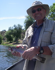 Steelhead on a Salmonfly Dry