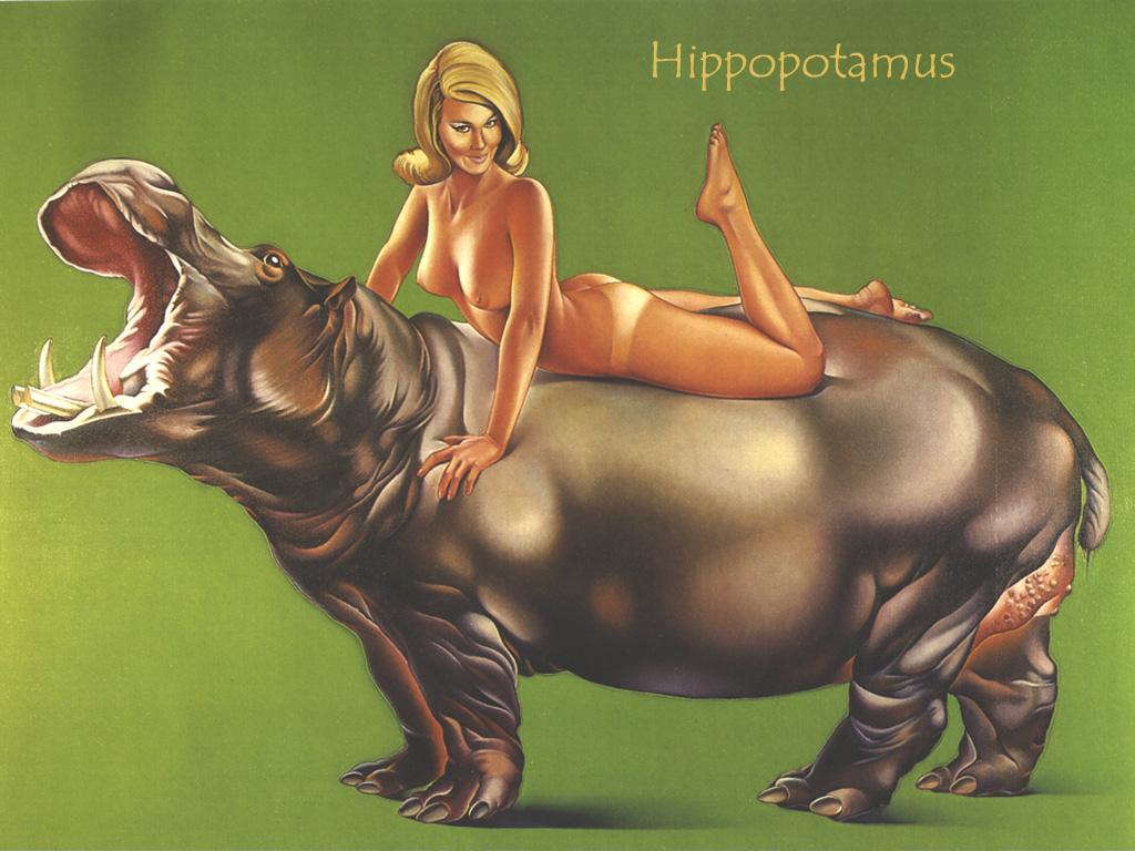 1967_Hippopotamus