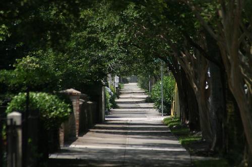 Walkway, Charleston.