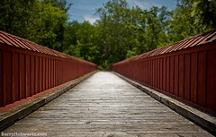 Pedestrian Bridge (Barry J. Schwartz) Tags: bridge canon bokeh f14 14 2414 24l 5dmkii 5dmk2 barryjschwartzcom