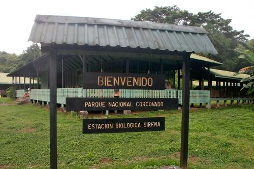 Parque Nacional Corcovado-148