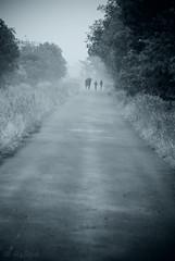 misty walk (=Я|Rod=) Tags: street family blue trees people grass misty iso800 haze rainyday walk sunday lane bushes stroll f71 aftertherain tinted regen spaziergang dunst 1500s noisereduction diesig 23ev nikond80 200300mm tamron7020028 ©rerod я|r ©reinerrodekohr