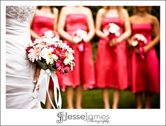 Christine & Tim (Jesse James Photography) Tags: wedding love niagarafalls groom bride nikon women marriage arches bridesmaid