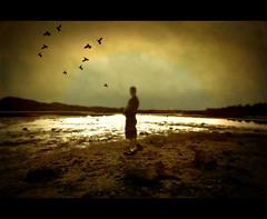 Alone on the dark! (Johan Runegrund) Tags: abigfave