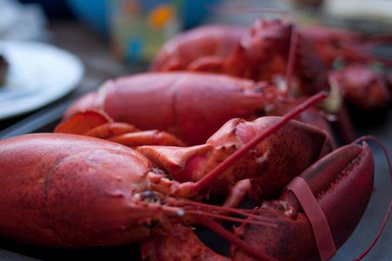 lobster dinner 1