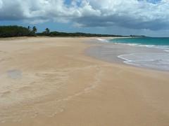 Papohaku Beach (4)