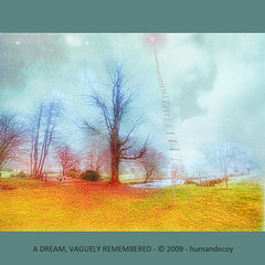 A dream, vaguely remembered (Explored) (Humandecoy - back) Tags: texture dream explore ladder ps4 visionquality daarklands magicunicornverybest