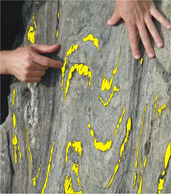 parasites_and_boudins_yellow