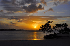 cuban sunset (DrMonia) Tags: sunset sea seascape tree beach nature alberi tramonto cuba playapesquero guardalavaca seasunclouds