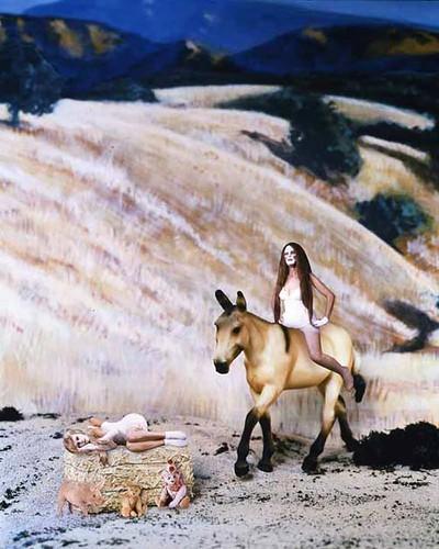 adventure-mule[1]