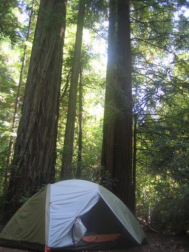 I heart my tent
