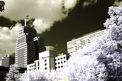 dt saint paul IR